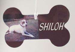 terrier photo printed plastic dog bone ornament personalized with dog's name
